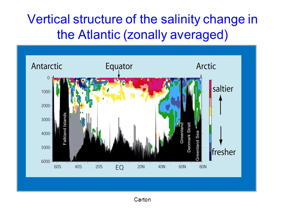 Vertical structure of the salinity change in the Atlantic (zonally averaged) Carton