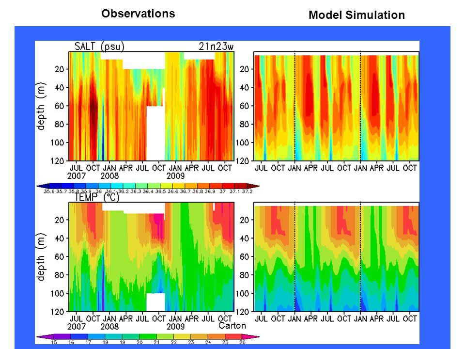 Observations Model Simulation Carton