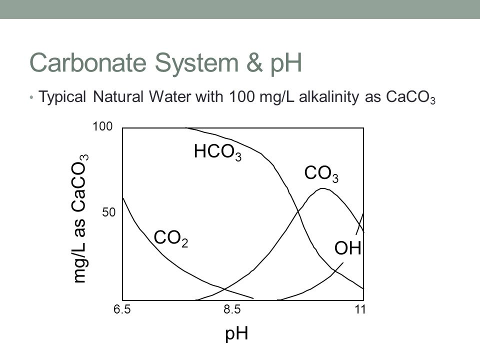 Carbonate System & pH Typical Natural Water with 100 mg/L alkalinity as CaCO 3 pH 100 mg/L as CaCO 3 6.5118.5 50 CO 2 CO 3 HCO 3 OH
