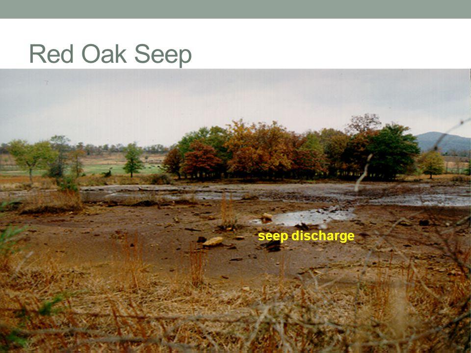 Red Oak Seep seep discharge