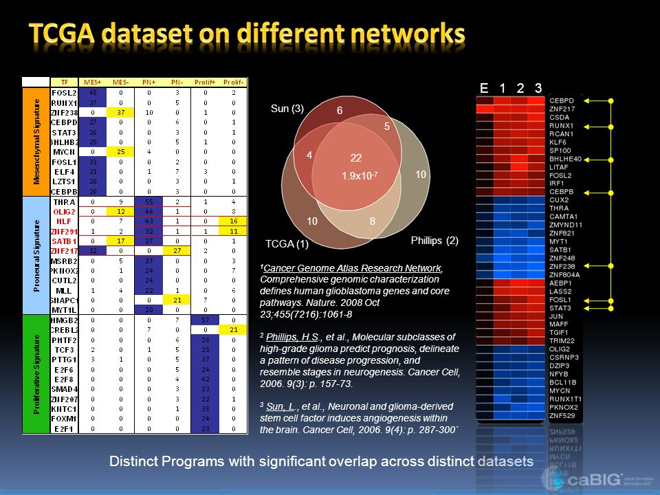 Distinct Programs with significant overlap across distinct datasets Phillips (2) Sun (3) TCGA (1) 22 10 5 6 8 4 1.9x10 -7 E 1 2 3 1 Cancer Genome Atlas Research Network, Comprehensive genomic characterization defines human glioblastoma genes and core pathways.