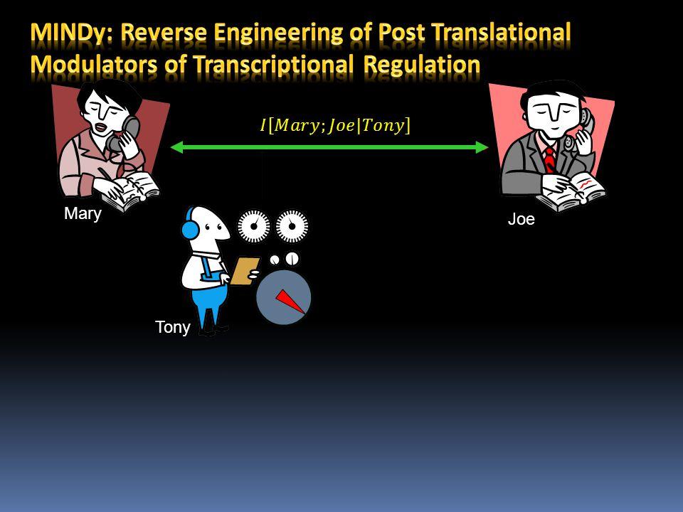 Joe Mary Tony MYCTERT GSK3 Degradation Signal MYC TERT GSK3