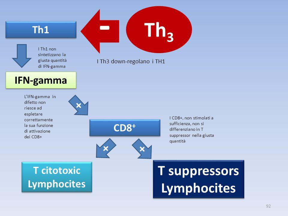 IFN-gamma Th1 CD8 + T citotoxic Lymphocites T suppressors Lymphocites T suppressors Lymphocites - + + + 92 Th 3 I Th3 down-regolano i TH1 I Th1 non sintetizzano la giusta quantità di IFN-gamma L'IFN-gamma in difetto non riesce ad espletare correttamente la sua funzione di attivazione dei CD8+ I CD8+, non stimolati a sufficienza, non si differenziano in T suppressor nella giusta quantità