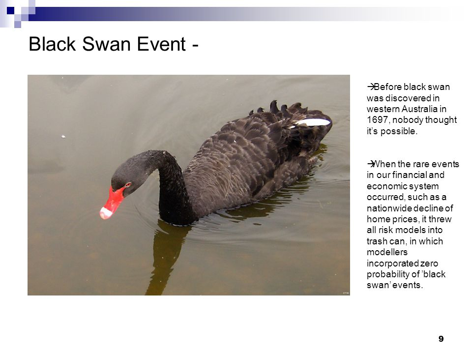 9 9 Black Swan Event -  Before black swan was discovered in western Australia in 1697, nobody thought it's possible.  When the rare events in our fi