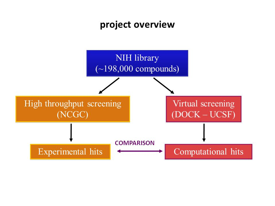 project overview NIH library (~198,000 compounds)‏ NIH library (~198,000 compounds)‏ High throughput screening (NCGC)‏ High throughput screening (NCGC)‏ Virtual screening (DOCK – UCSF)‏ Virtual screening (DOCK – UCSF)‏ Experimental hits Computational hits COMPARISON