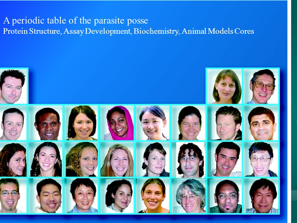 A periodic table of the parasite posse Protein Structure, Assay Development, Biochemistry, Animal Models Cores