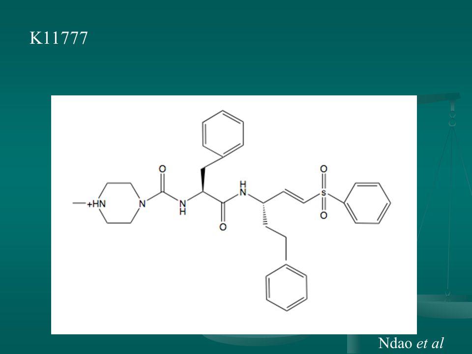 K11777 Ndao et al
