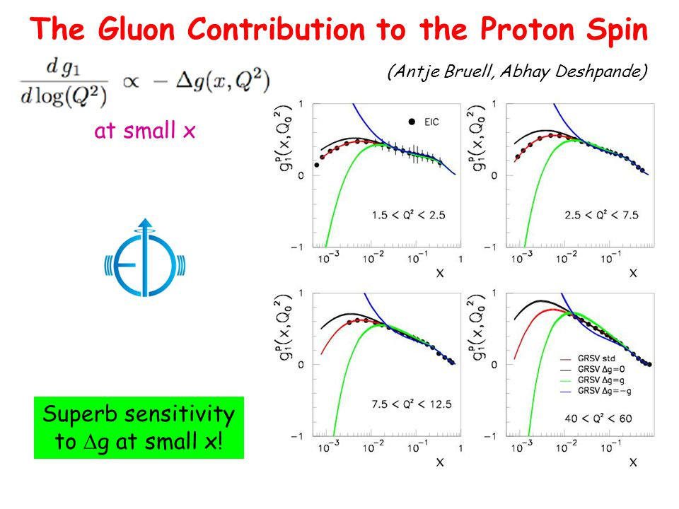 The Gluon Contribution to the Proton Spin at small x Superb sensitivity to  g at small x.
