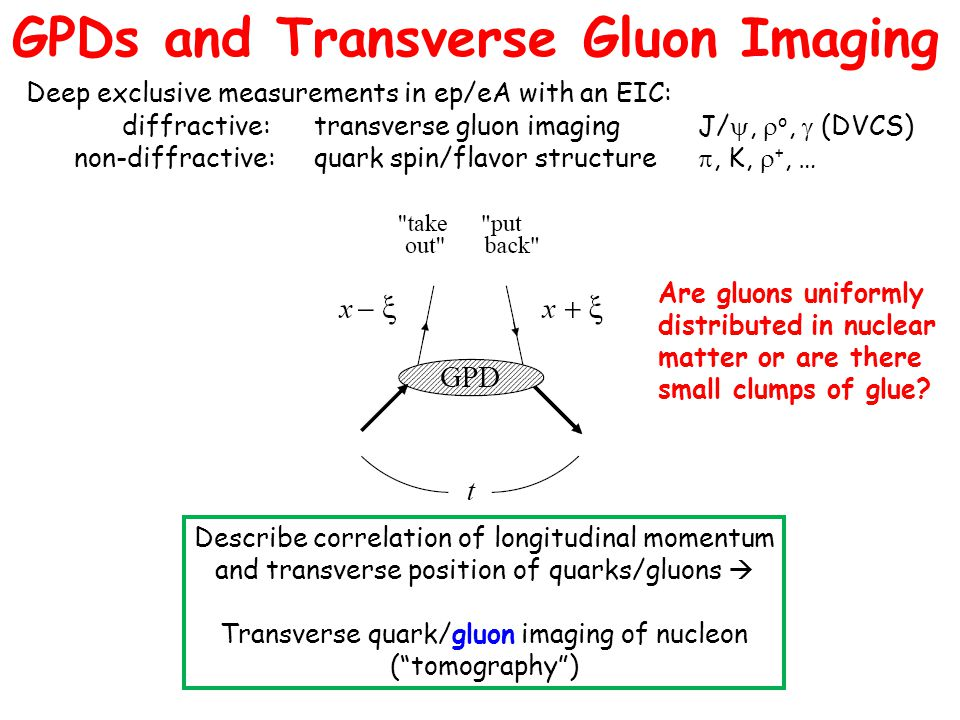 GPDs and Transverse Gluon Imaging Deep exclusive measurements in ep/eA with an EIC: diffractive:transverse gluon imagingJ/ ,  o,  (DVCS) non-diffractive:quark spin/flavor structure , K,  +, … [ or J/ , ,  0 , K,  +, … ] Describe correlation of longitudinal momentum and transverse position of quarks/gluons  Transverse quark/gluon imaging of nucleon ( tomography ) Are gluons uniformly distributed in nuclear matter or are there small clumps of glue