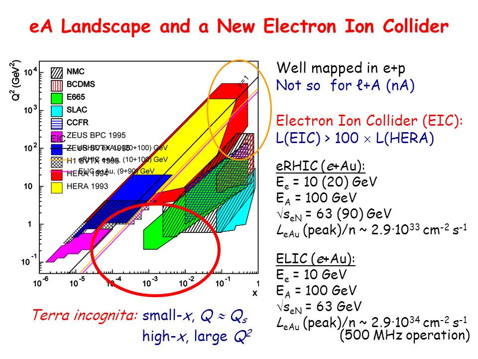 eA Landscape and a New Electron Ion Collider Well mapped in e+p Not so for ℓ+A (nA) Electron Ion Collider (EIC): L(EIC) > 100  L(HERA) eRHIC (e+Au): E e = 10 (20) GeV E A = 100 GeV  s eN = 63 (90) GeV L eAu (peak)/n ~ 2.9·10 33 cm -2 s -1 ELIC (e+Au): E e = 10 GeV E A = 100 GeV  s eN = 63 GeV L eAu (peak)/n ~ 2.9·10 34 cm -2 s -1 (500 MHz operation) Terra incognita: small-x, Q  Q s high-x, large Q 2