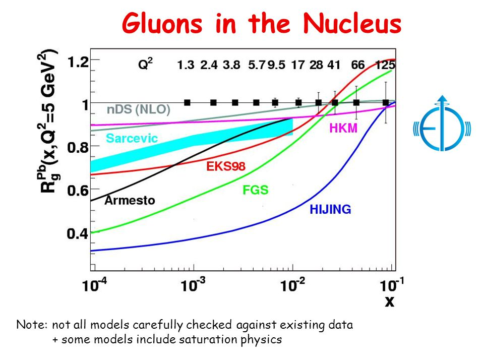 Gluons in the Nucleus Note: not all models carefully checked against existing data + some models include saturation physics