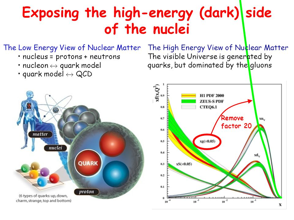 9 The Low Energy View of Nuclear Matter nucleus = protons + neutrons nucleon  quark model quark model  QCD The High Energy View of Nuclear Matter The visible Universe is generated by quarks, but dominated by the gluons Remove factor 20 Exposing the high-energy (dark) side of the nuclei