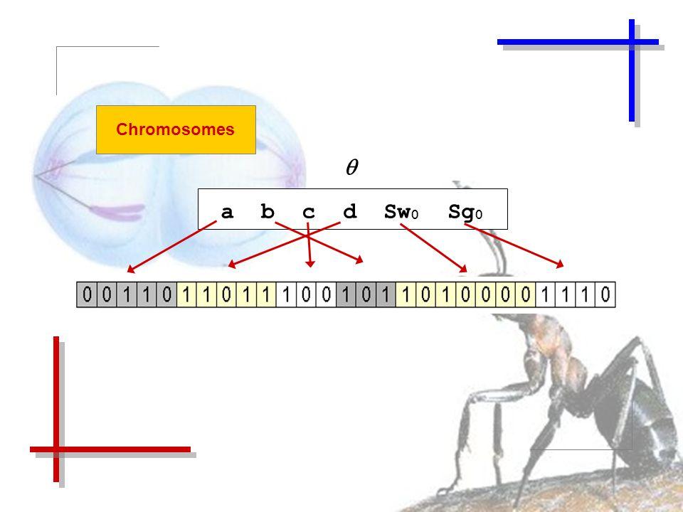 Chromosomes  a b c d Sw 0 Sg 0