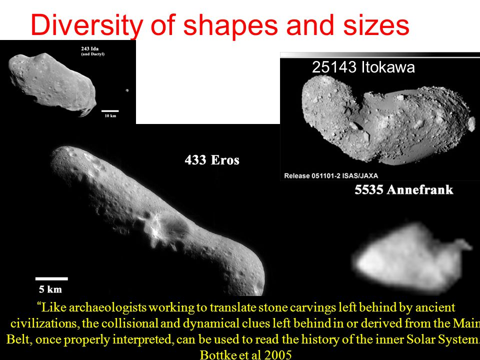 Diversity of shapes and sizes 25143 Itokawa Like archaeologists working to translate stone carvings left behind by ancient civilizations, the collisional and dynamical clues left behind in or derived from the Main Belt, once properly interpreted, can be used to read the history of the inner Solar System.