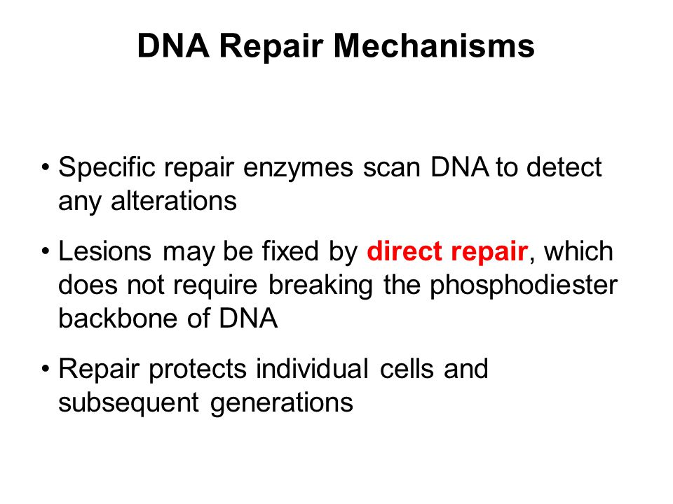 DNA Repair Mechanisms Specific repair enzymes scan DNA to detect any alterations Lesions may be fixed by direct repair, which does not require breakin