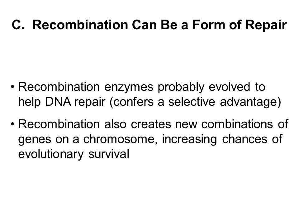 C. Recombination Can Be a Form of Repair Recombination enzymes probably evolved to help DNA repair (confers a selective advantage) Recombination also