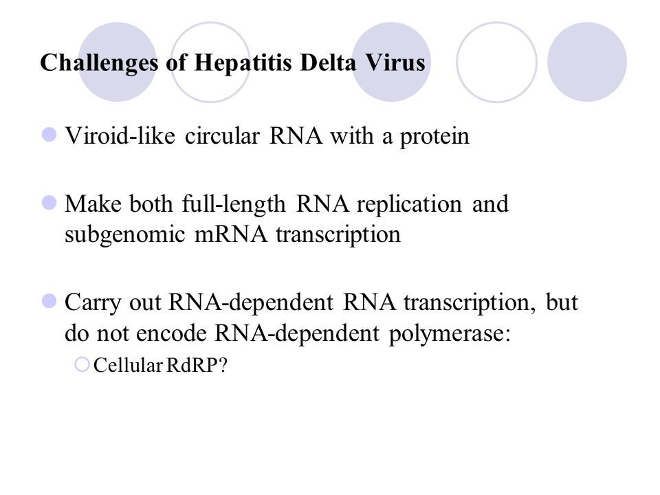 Hepatitis Delta Virus RNA Nucleocapsid (HDAg) HBsAg Major protein Middle protein Large protein Phospholipid