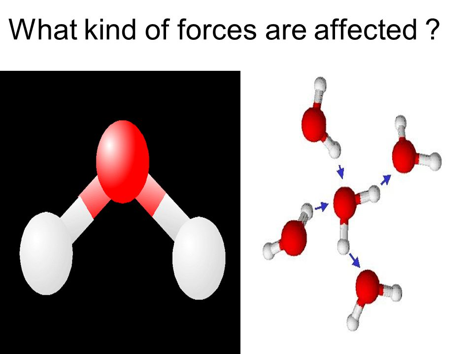 What kind of forces are affected ?.