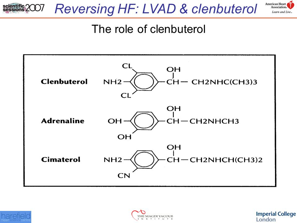 Reversing HF: LVAD & clenbuterol The role of clenbuterol