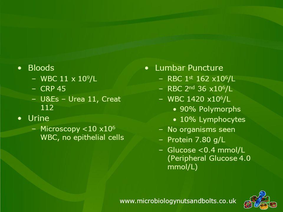 www.microbiologynutsandbolts.co.uk Bloods –WBC 11 x 10 9 /L –CRP 45 –U&Es – Urea 11, Creat 112 Urine –Microscopy <10 x10 6 WBC, no epithelial cells Lu