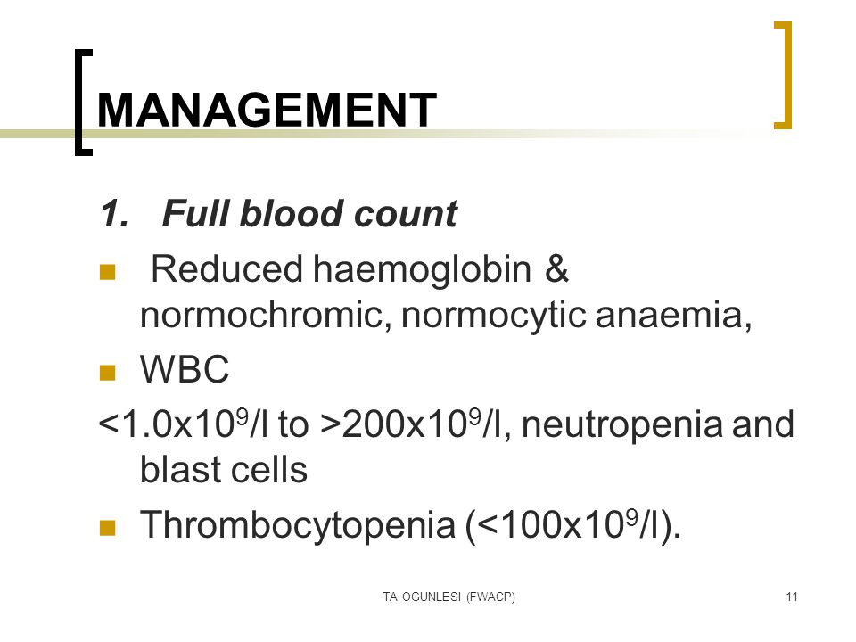 TA OGUNLESI (FWACP)11 MANAGEMENT 1. Full blood count Reduced haemoglobin & normochromic, normocytic anaemia, WBC 200x10 9 /l, neutropenia and blast ce