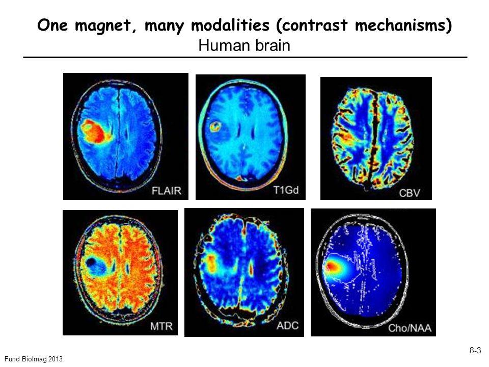 Fund BioImag 2013 8-4 1 2 3 4 5 6 1 mm Ca imaging using Mn-enhanced MRI Glutamate chemical shift imaging Phase imaging 1mm -6.25Hz 6.25Hz IV VI Cerebral blood flow using arterial spin labeling (rat,  -chloralose) 250 ml/100g/min 125 One magnet, many contrasts Rat brain