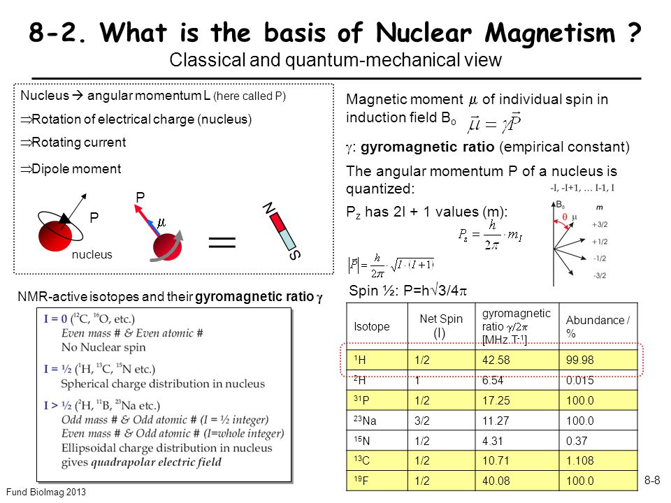 Fund BioImag 2013 8-9 What is the basis for nuclear magnetization .