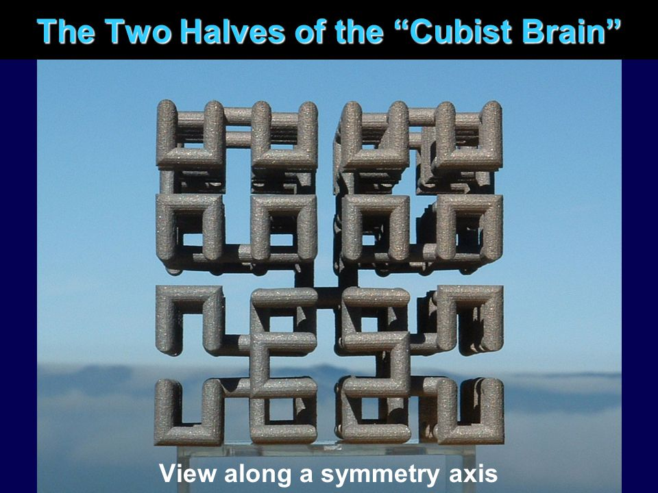 "The Two Halves of the ""Cubist Brain"" View along a symmetry axis"