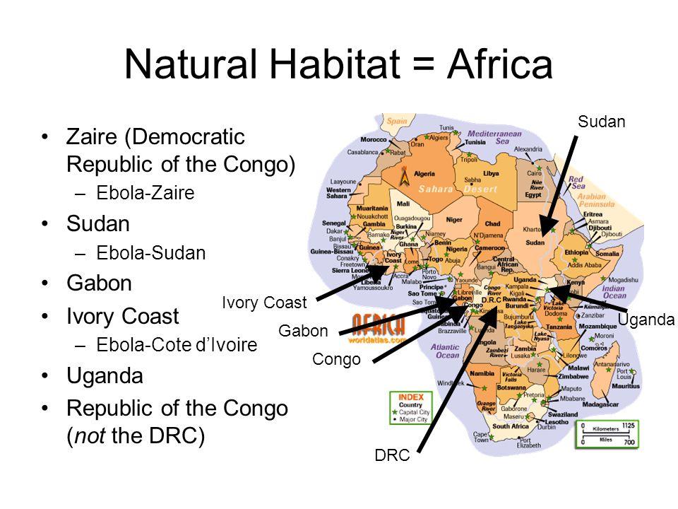 Natural Habitat = Africa Zaire (Democratic Republic of the Congo) –Ebola-Zaire Sudan –Ebola-Sudan Gabon Ivory Coast –Ebola-Cote d'Ivoire Uganda Republic of the Congo (not the DRC) Ivory Coast Gabon Congo DRC Uganda Sudan