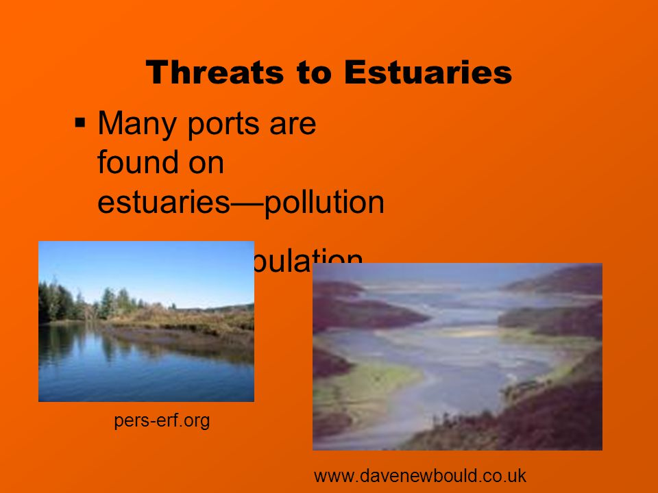 Threats to Estuaries  Many ports are found on estuaries—pollution  Human population www.davenewbould.co.uk pers-erf.org