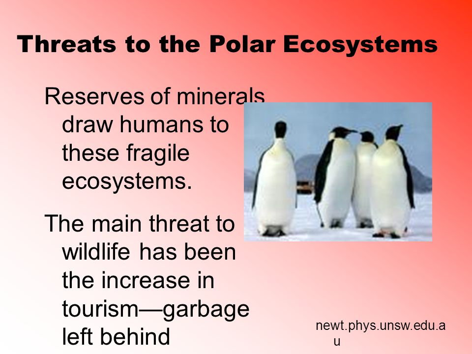 Threats to the Polar Ecosystems Reserves of minerals draw humans to these fragile ecosystems.