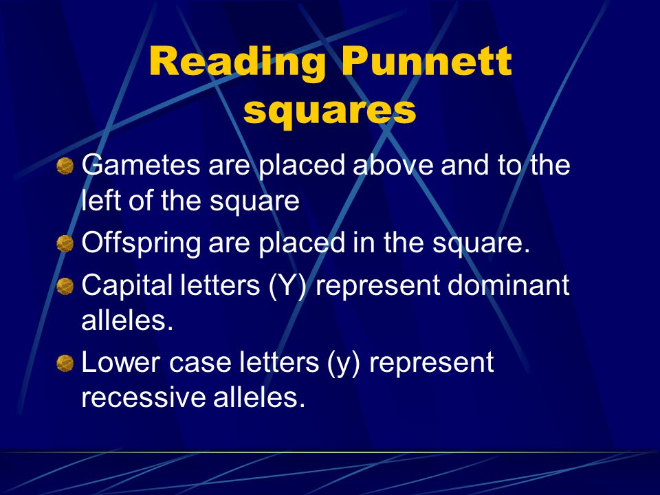 Punnett Square Developed by Reginald Punnett. A diagram used to show the probability or chances of a certain trait being passed from one generation to