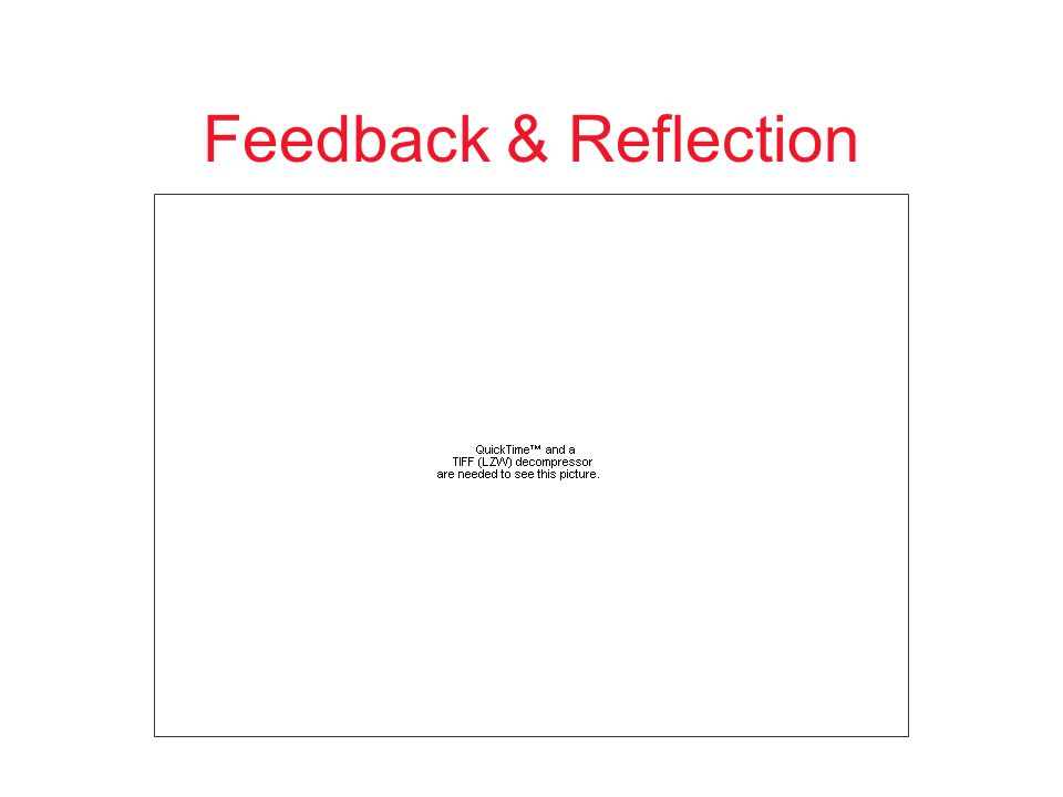 Feedback & Reflection