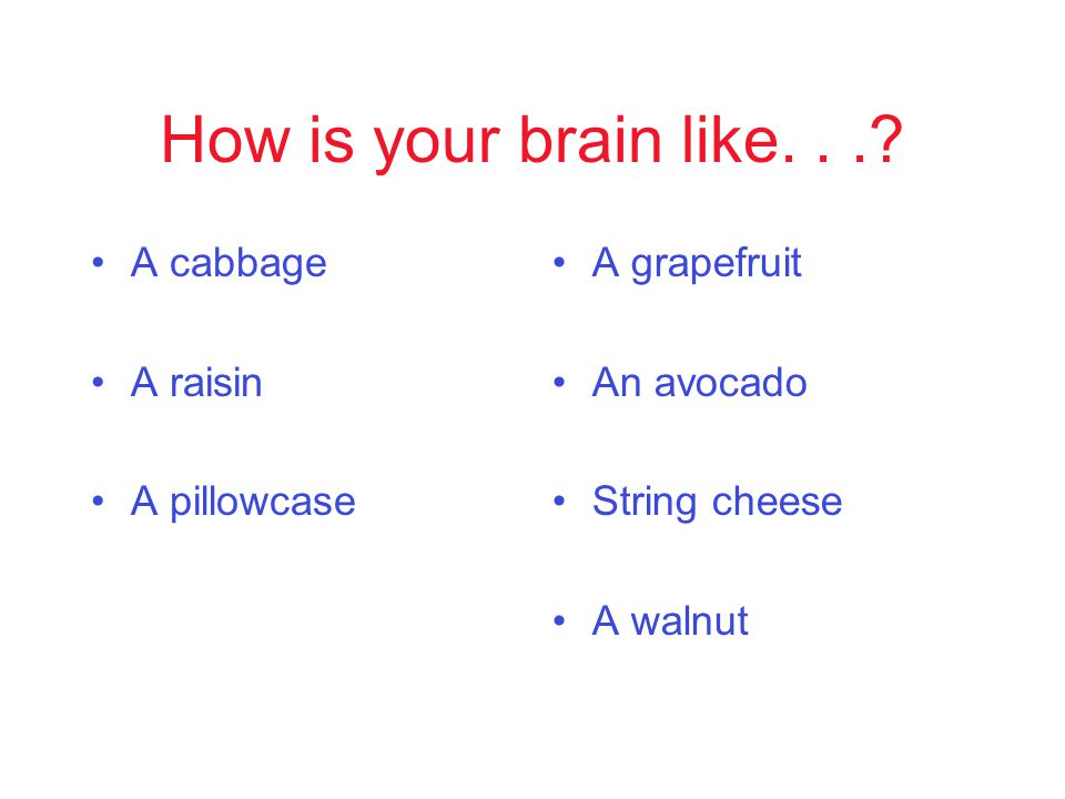 How is your brain like....