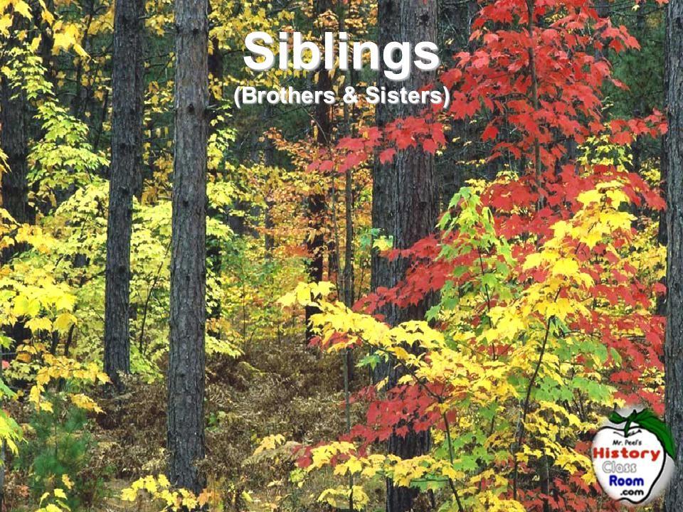 Siblings (Brothers & Sisters)