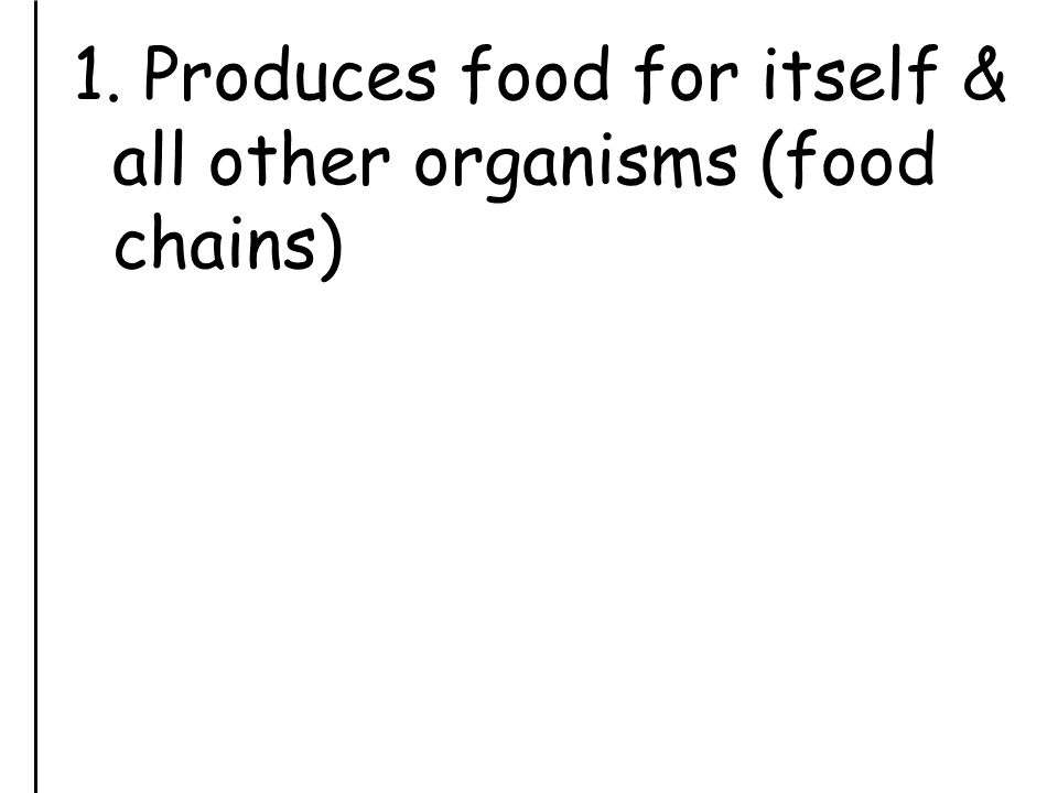 1. Produces food for itself & all other organisms (food chains)
