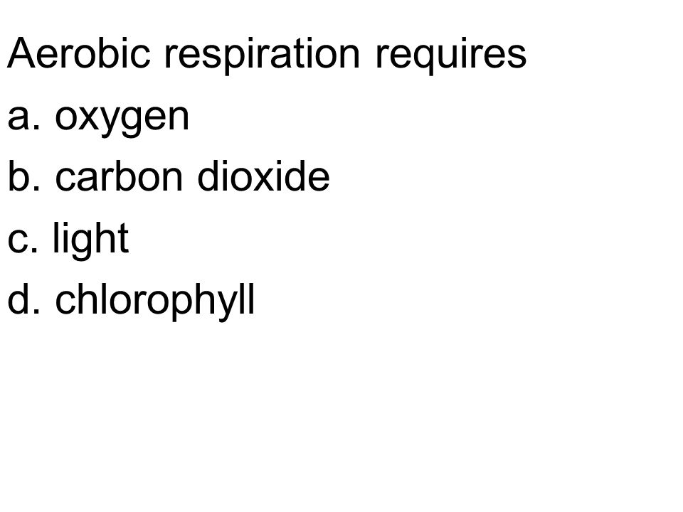 Aerobic respiration requires a. oxygen b. carbon dioxide c. light d. chlorophyll
