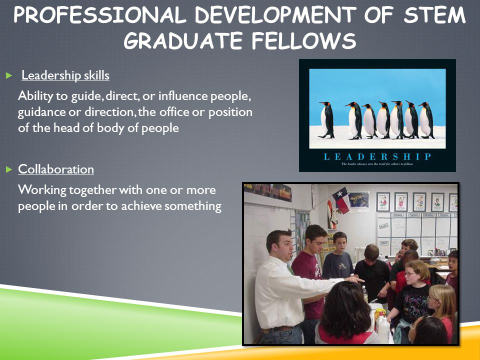PROFESSIONAL DEVELOPMENT OF STEM GRADUATE FELLOWS  Leadership skills Ability to guide, direct, or influence people, guidance or direction, the office