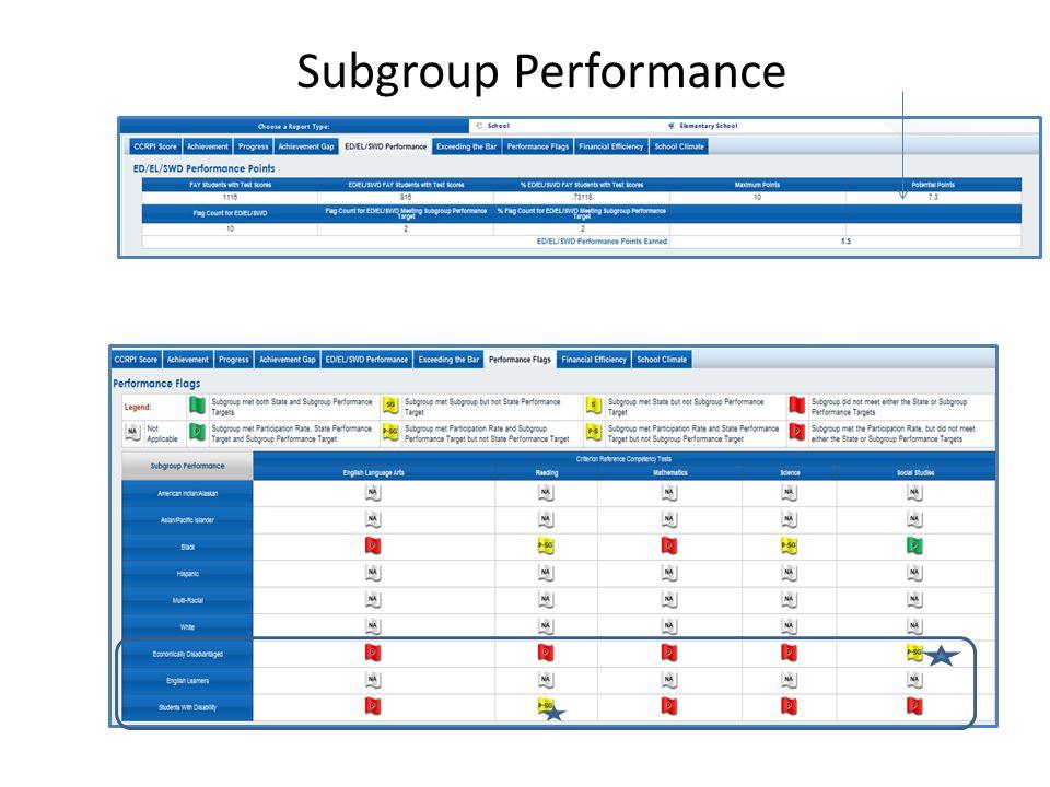 Subgroup Performance