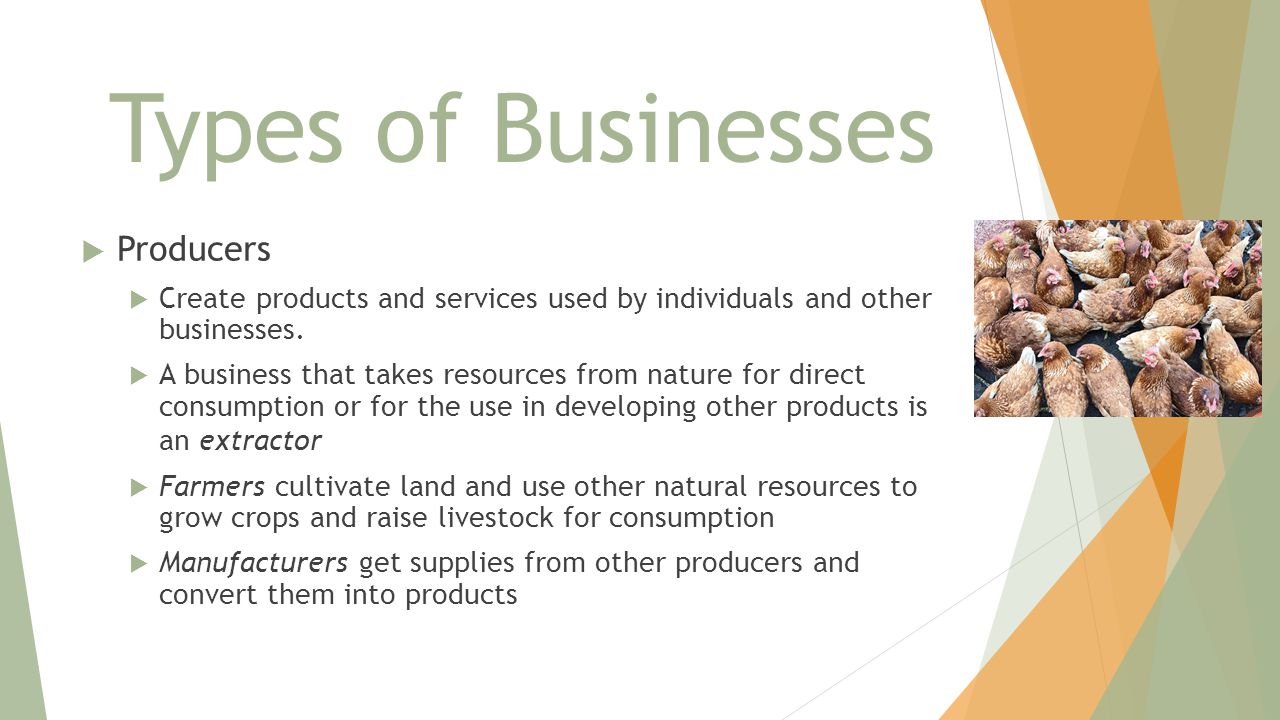 Types of Businesses  Producers  Create products and services used by individuals and other businesses.  A business that takes resources from nature