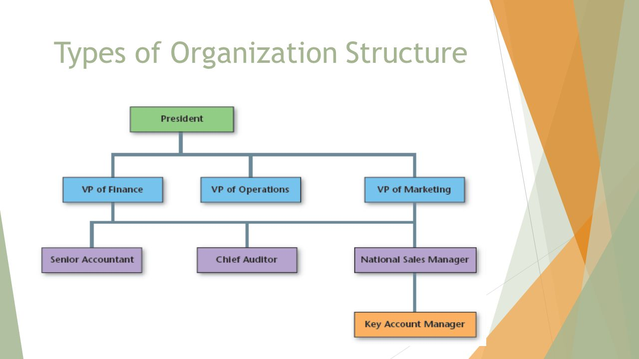 Types of Organization Structure