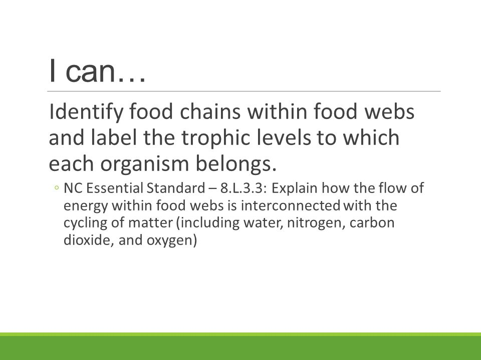 I can… Identify food chains within food webs and label the trophic levels to which each organism belongs. ◦NC Essential Standard – 8.L.3.3: Explain ho