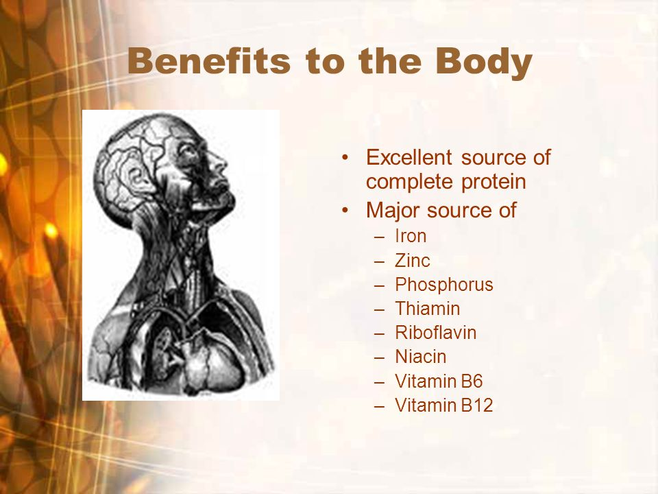 Benefits to the Body Excellent source of complete protein Major source of –Iron –Zinc –Phosphorus –Thiamin –Riboflavin –Niacin –Vitamin B6 –Vitamin B12