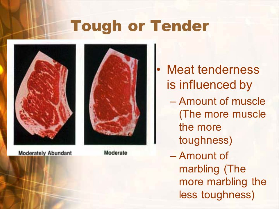 Tough or Tender Meat tenderness is influenced by –Amount of muscle (The more muscle the more toughness) –Amount of marbling (The more marbling the less toughness)