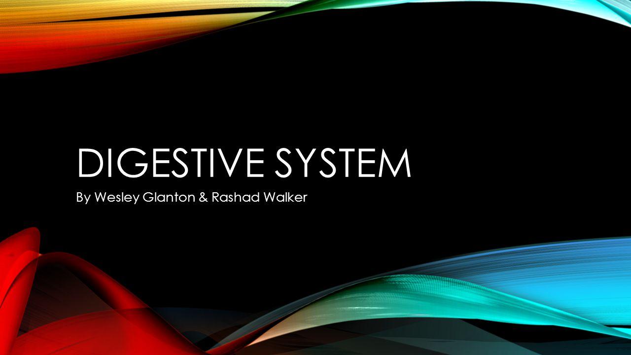 DIGESTIVE SYSTEM By Wesley Glanton & Rashad Walker
