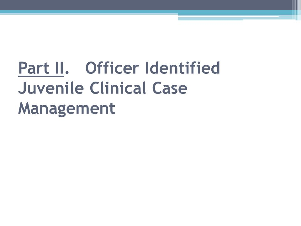 Part II. Officer Identified Juvenile Clinical Case Management