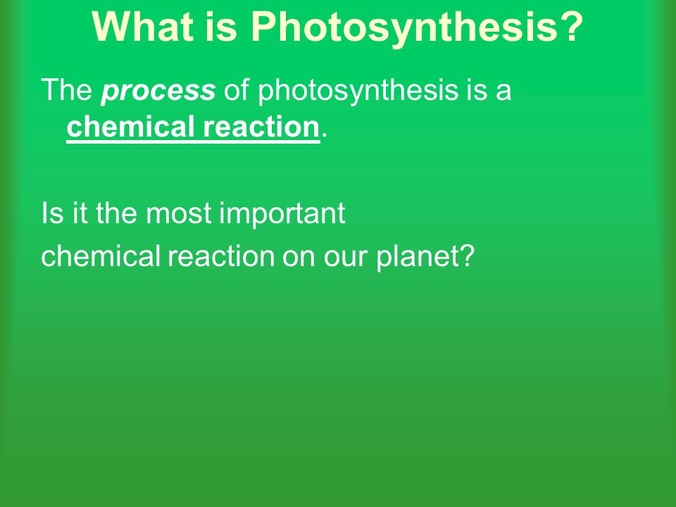 What is Photosynthesis? The process of photosynthesis is a chemical reaction. Is it the most important chemical reaction on our planet?