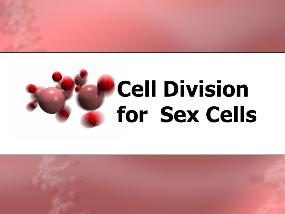 Cell Division for Sex Cells