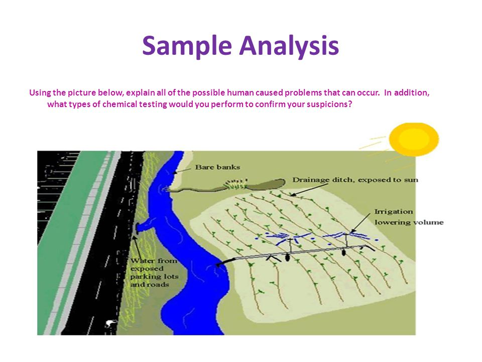 Sample Analysis Using the picture below, explain all of the possible human caused problems that can occur.