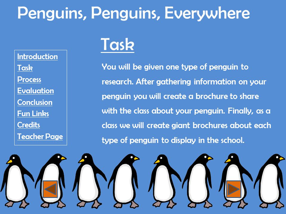 Penguins, Penguins, Everywhere Introduction Task Process Evaluation Conclusion Fun Links Credits Teacher Page